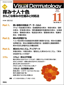 Visual Dermatology Vol.16 No.11