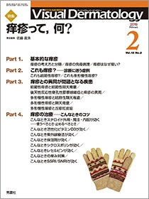 Visual Dermatology Vol.18 No.2